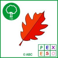 pexeso jeseň - farebné listy