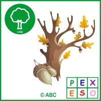 pexeso jeseň - symboly jesene