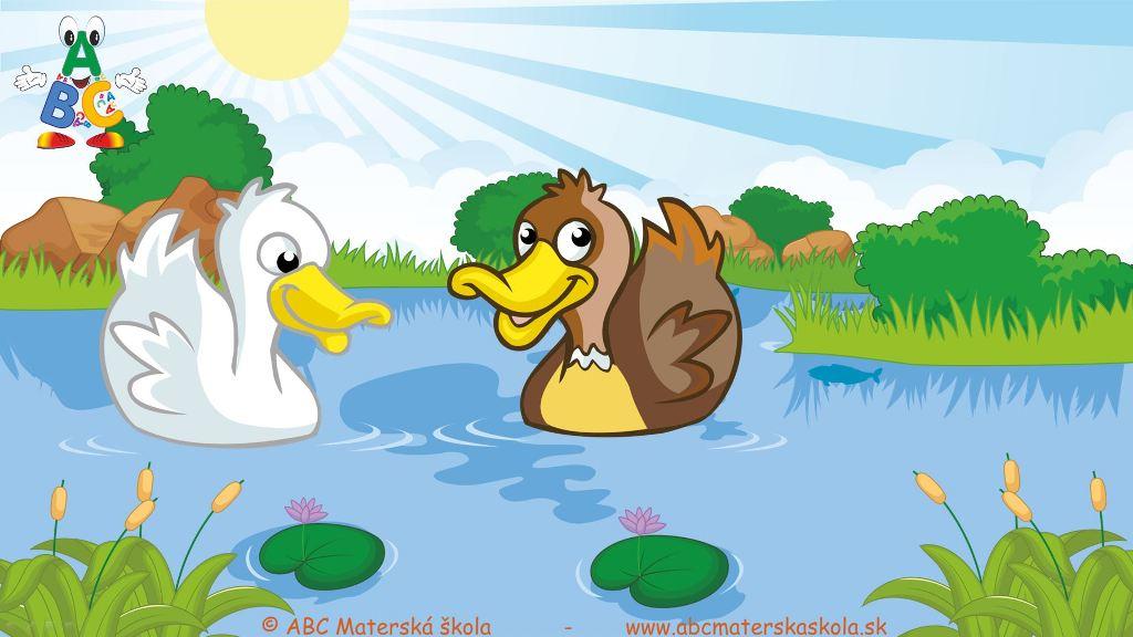riekanky, pláva kačka, pláva kačka po jazere,video riekanky